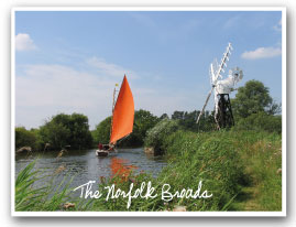 the broads in Norfolk